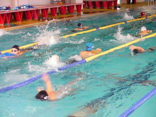 小学生合宿 水泳