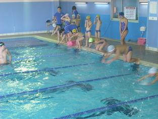 11-水泳記録会ブログ用2