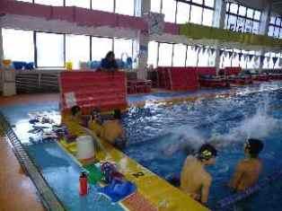 関西強化 水泳