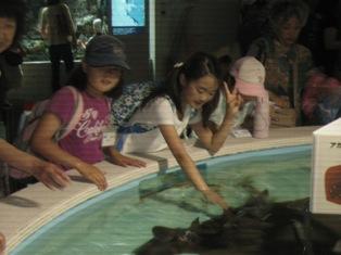 元住吉 水族館