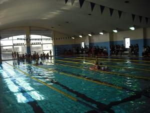 岩槻-水泳記録会1